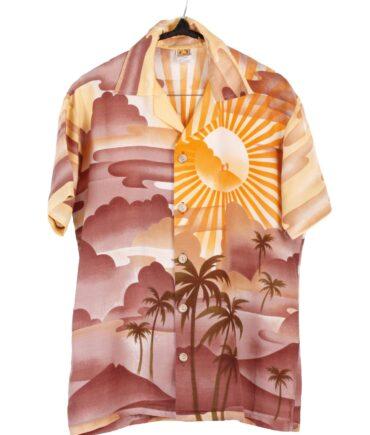 vintage HANG TEN Vintage Surf skate med airbrushed sunrise hawaiian shirt